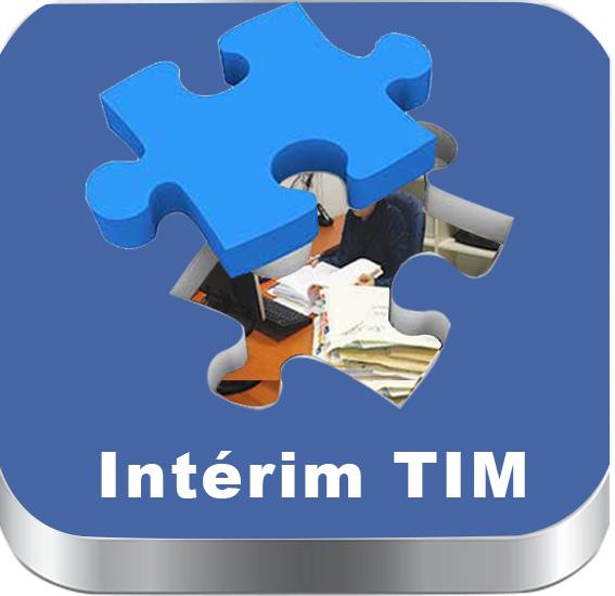 teletravail interim