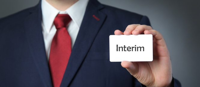 travail a domicile interim