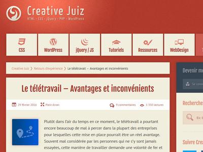 teletravail webdesigner